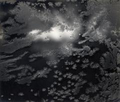 Frost on Window, Revere, Massachusetts, 1957
