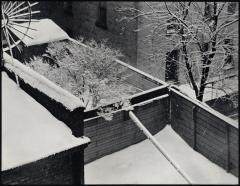 Snow, backyards, New York City, 1914