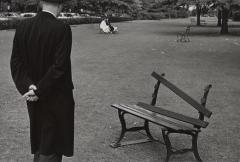 Broken Bench, New York, September 20, 1962